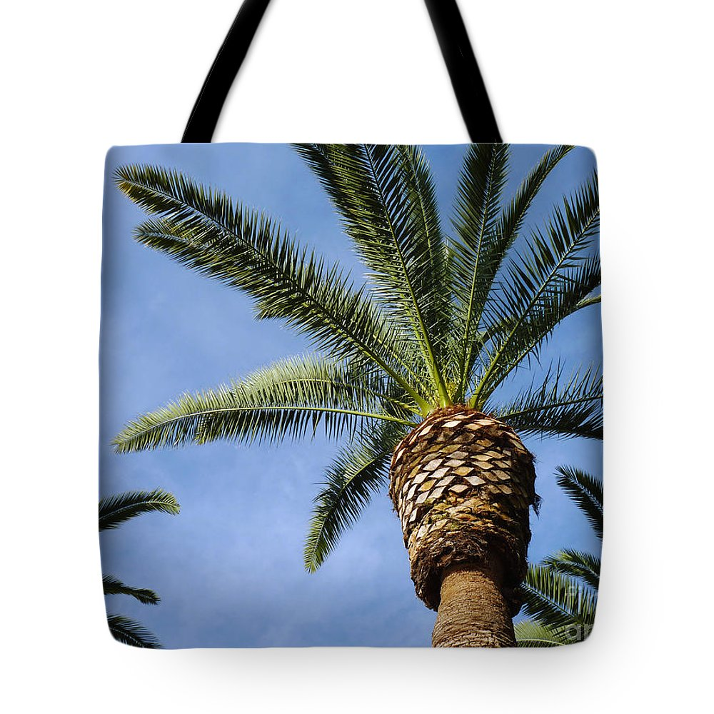 Palm Tree Tote Bag featuring the photograph Classic Palms by Meghan at FireBonnet Art