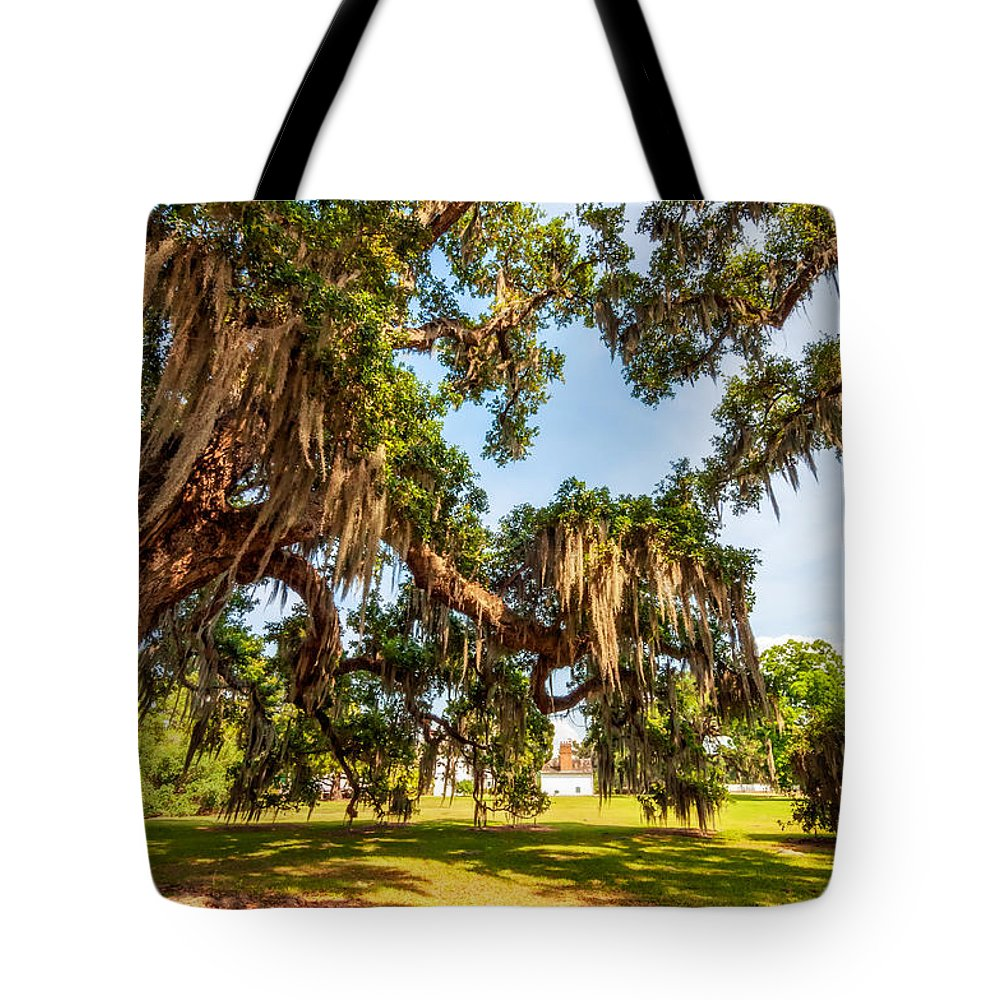Nola Tote Bag featuring the photograph Classic Southern Beauty 2 by Steve Harrington