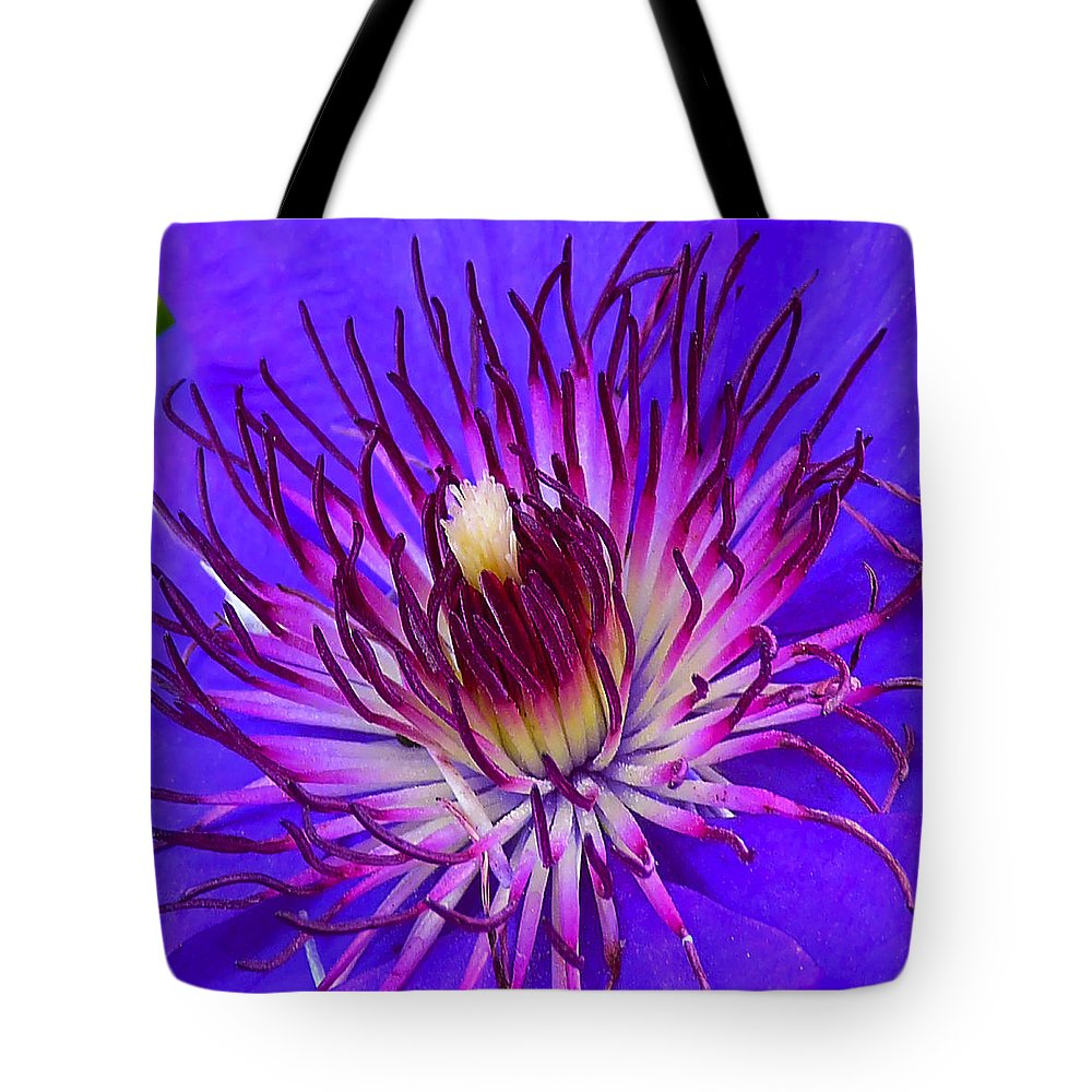 Clematis Tote Bag featuring the photograph Clematis 1 by Ingrid Smith-Johnsen