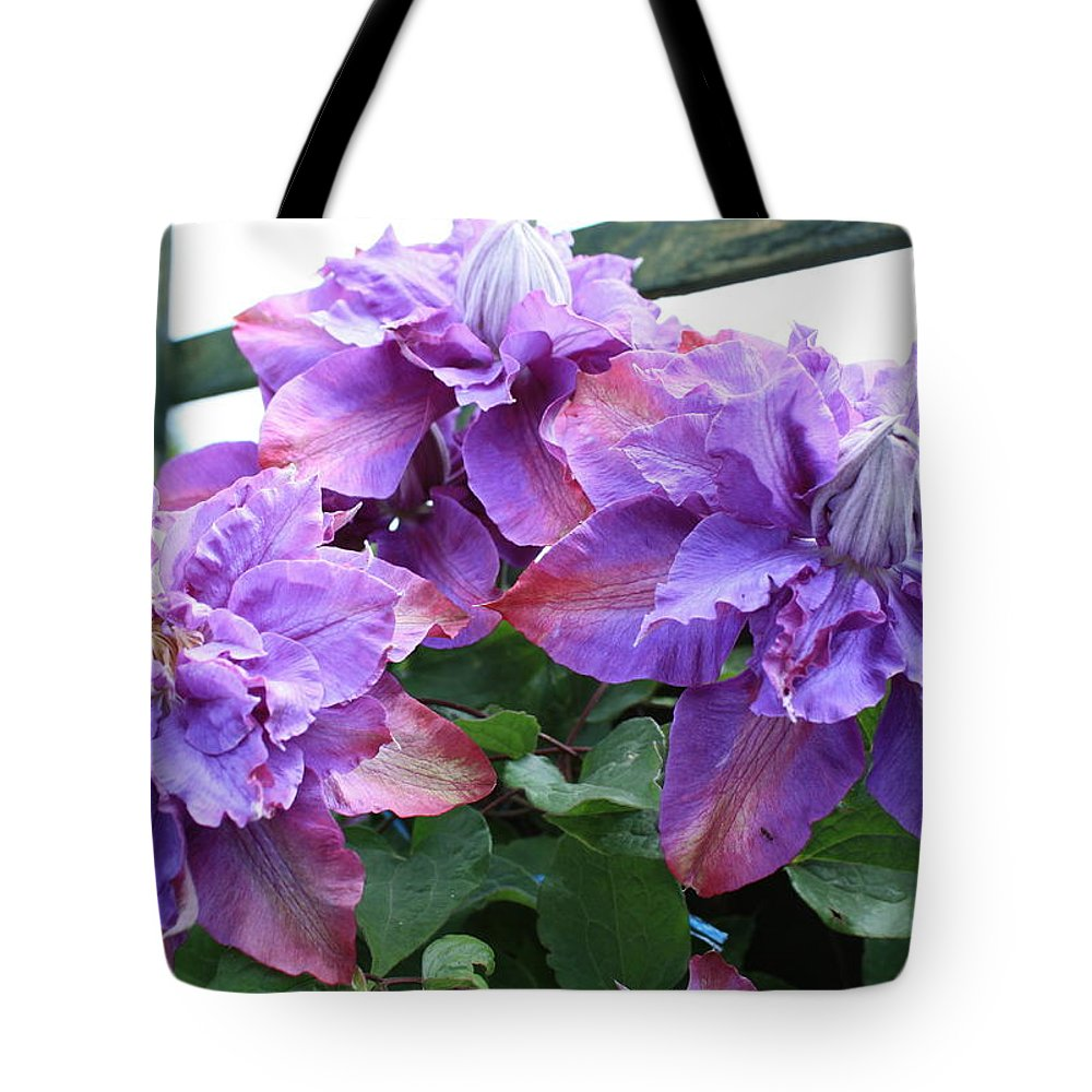 Clematis Vyvyan Pennell Tote Bag featuring the photograph Clematis Vyvyan Pennell by Kevin F Cook