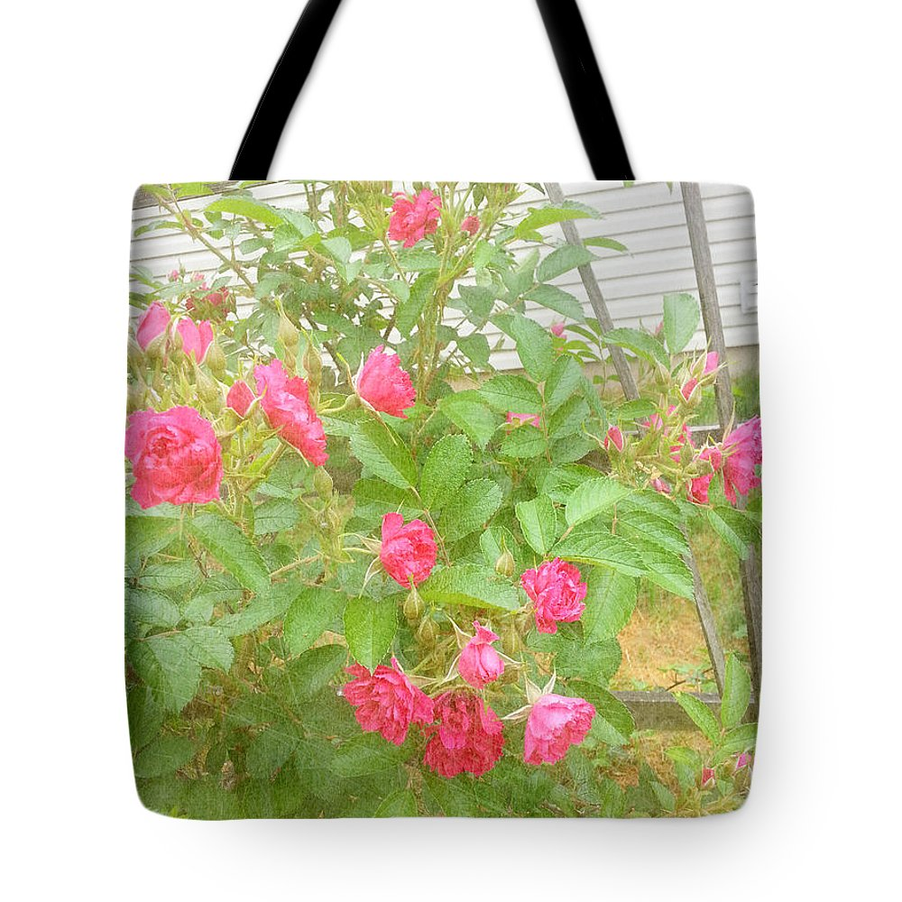 Trellis Tote Bag featuring the photograph Climbing Roses by Alys Caviness-Gober