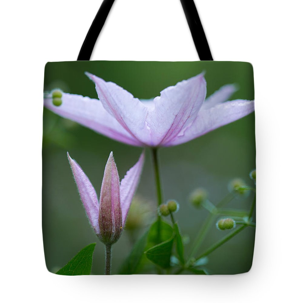 Climbing Upwards Tote Bag featuring the photograph Climbing Upwards by Dale Kincaid