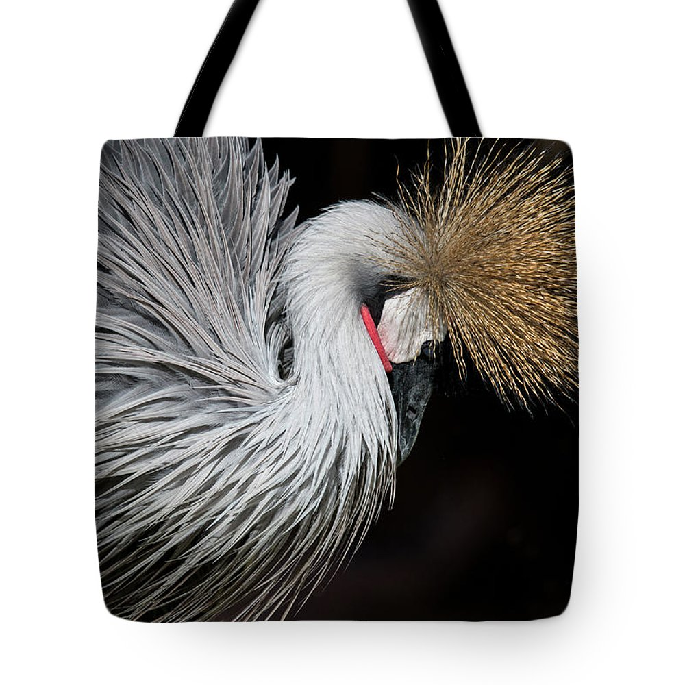 Tranquility Tote Bag featuring the photograph Close Portrait Of A Grey Crowned Crane by © Santiago Urquijo