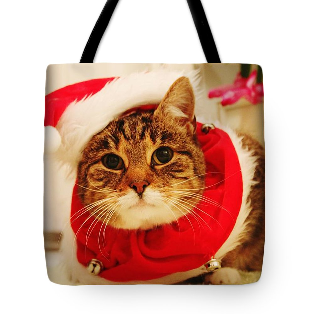 Pets Tote Bag featuring the photograph Close-up Of Christmas Cat by Gregor Bleul / Eyeem