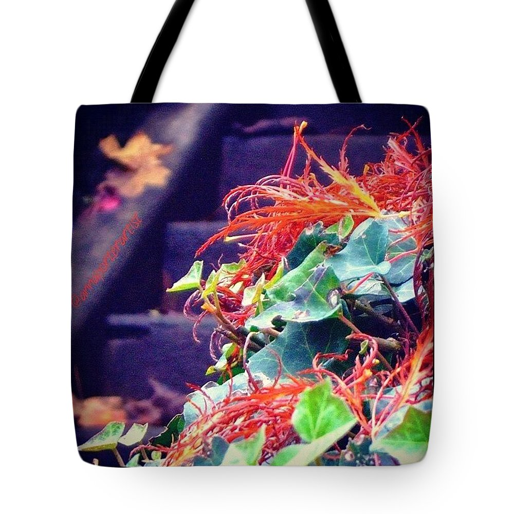 Stairs Tote Bag featuring the photograph Closer Inspection #stairs #autumn by Anna Porter