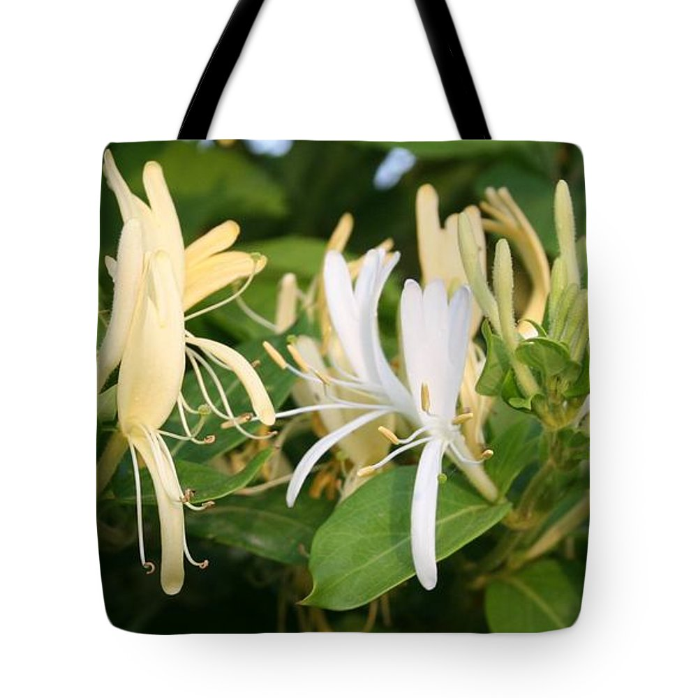 Flower Tote Bag featuring the photograph Closeup Shot Of Lonicera European Honeysuckle Flower by Taiche Acrylic Art