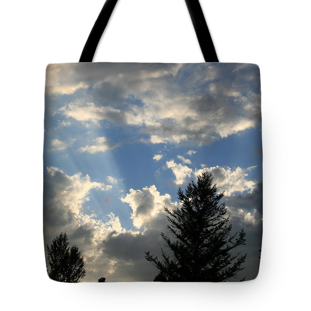 Trees Tote Bag featuring the photograph Cloud Shadows by Betty-Anne McDonald