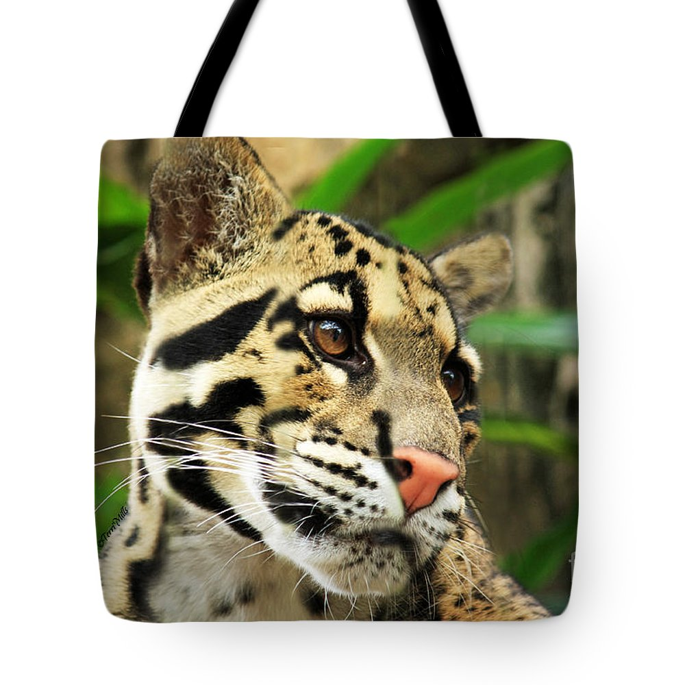 Clouded Tote Bag featuring the photograph Clouded Leopard Face by Terri Mills