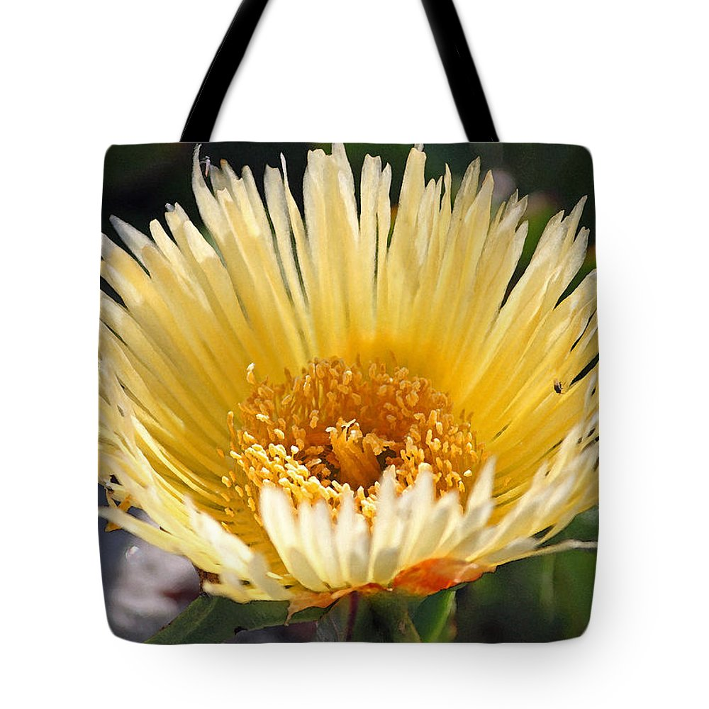 Coast Tote Bag featuring the photograph Coastal Bloom II by Suzanne Gaff