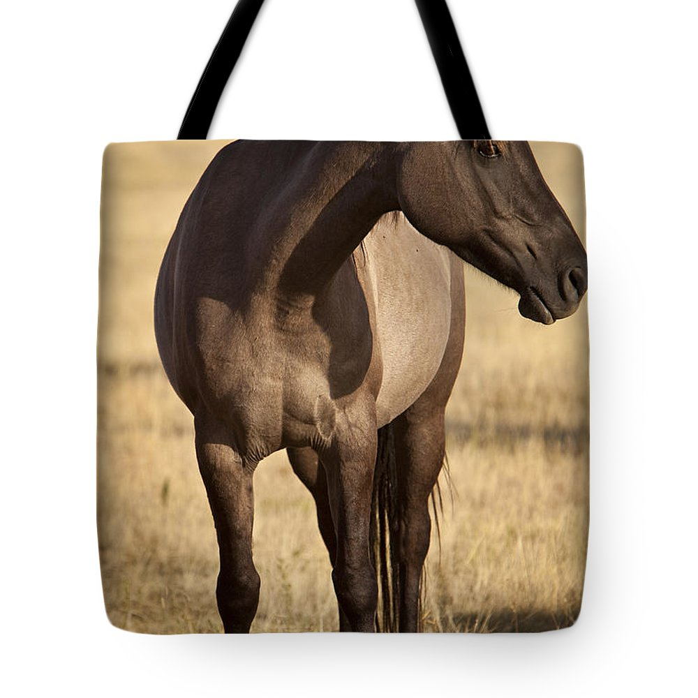 Horse Tote Bag featuring the photograph Cochise by Jack Milchanowski