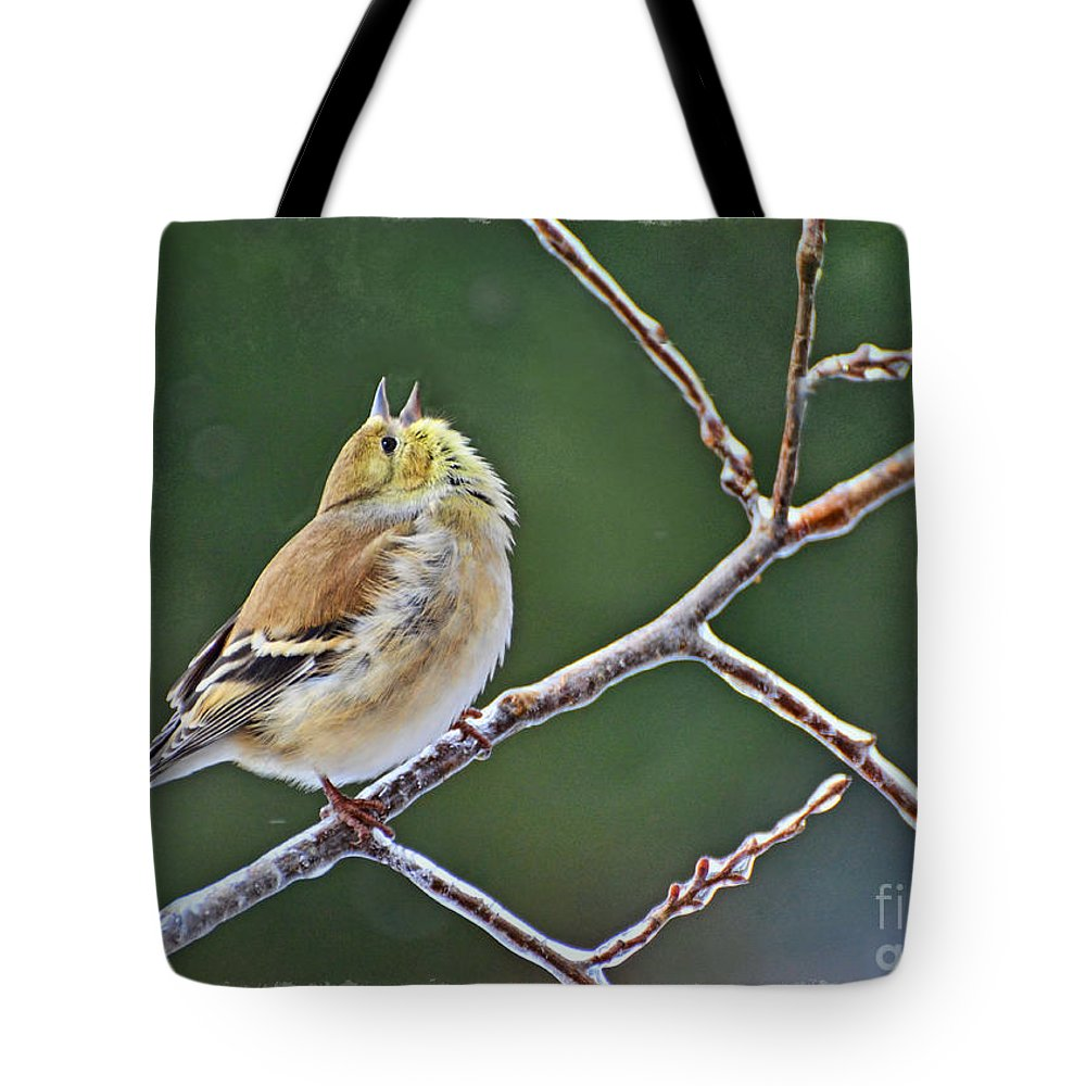 Nature Tote Bag featuring the photograph Cock-a-doodle-doo Gold Finch by Debbie Portwood