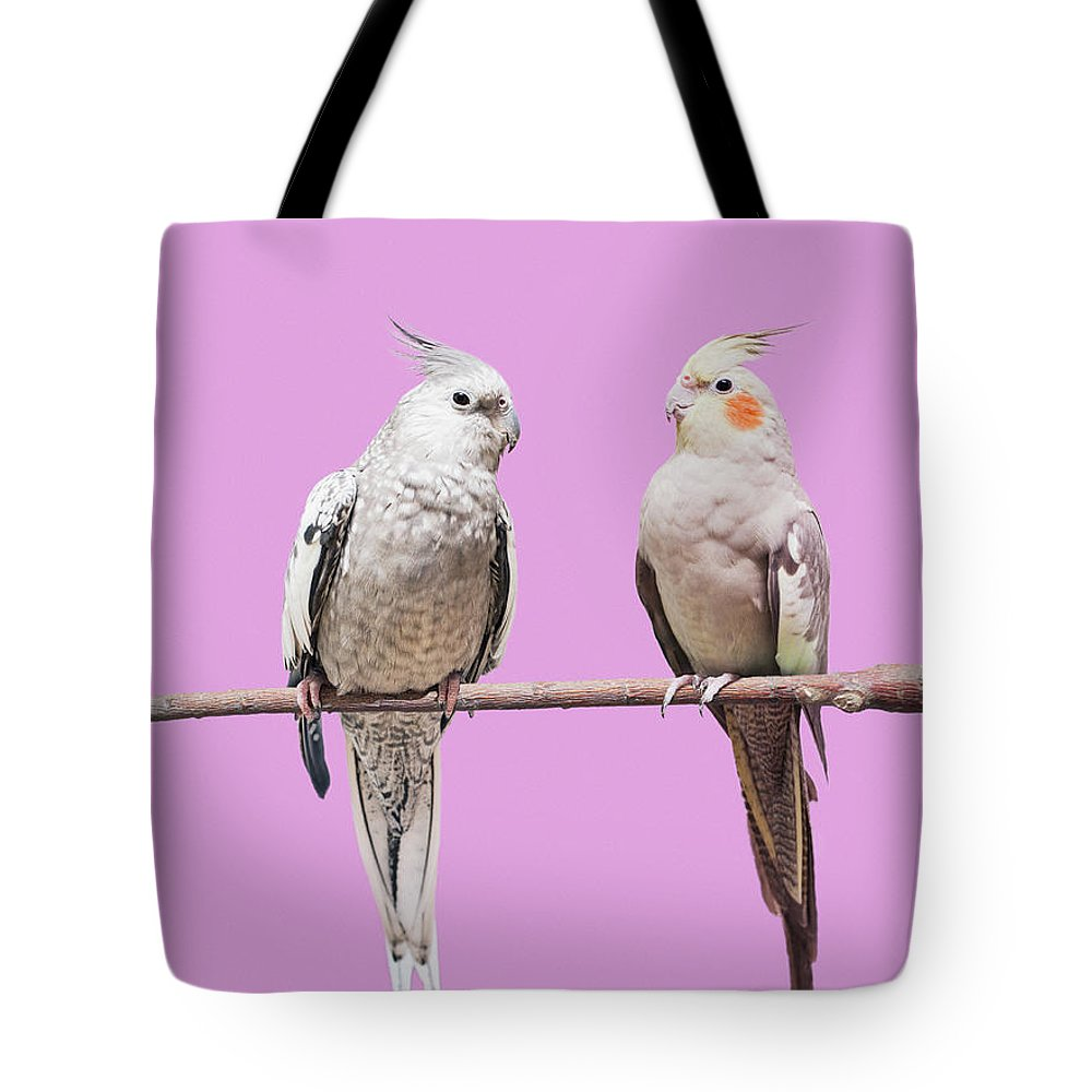Pets Tote Bag featuring the photograph Cockatiel Parrots by Larry Washburn