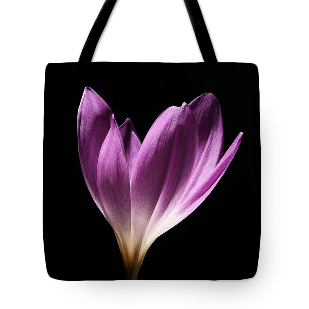 Colchicum Tote Bag featuring the photograph Colchicum #3 by Judy Whitton