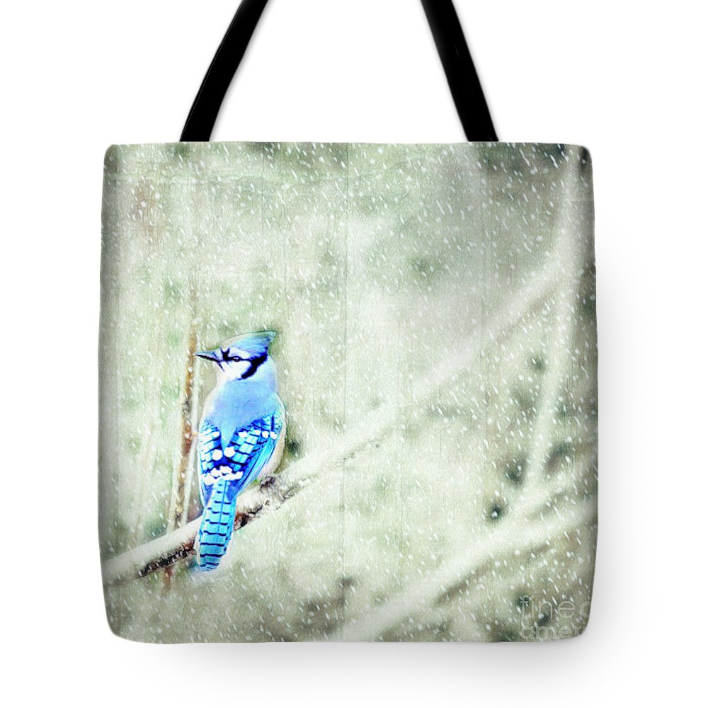 Landscape Tote Bag featuring the photograph Cold Day For A Blue Jay by Peggy Franz