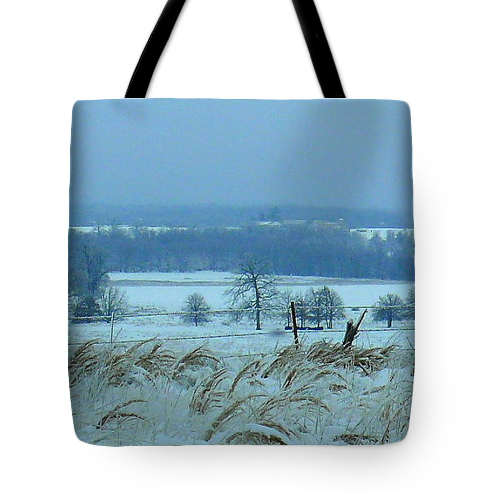 Snowy Tote Bag featuring the photograph Cold Day In February by Robert Shinn