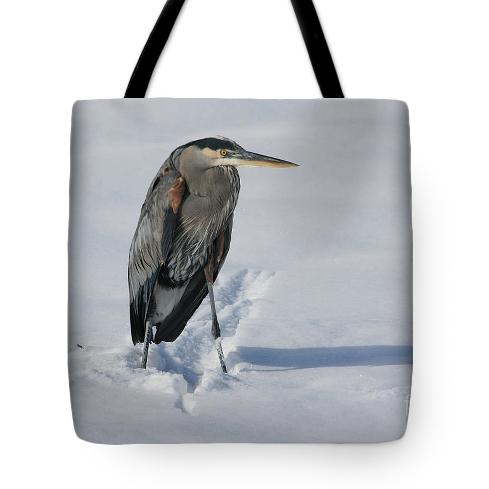 Great Blue Heron Tote Bag featuring the photograph Cold Feet by Marty Fancy