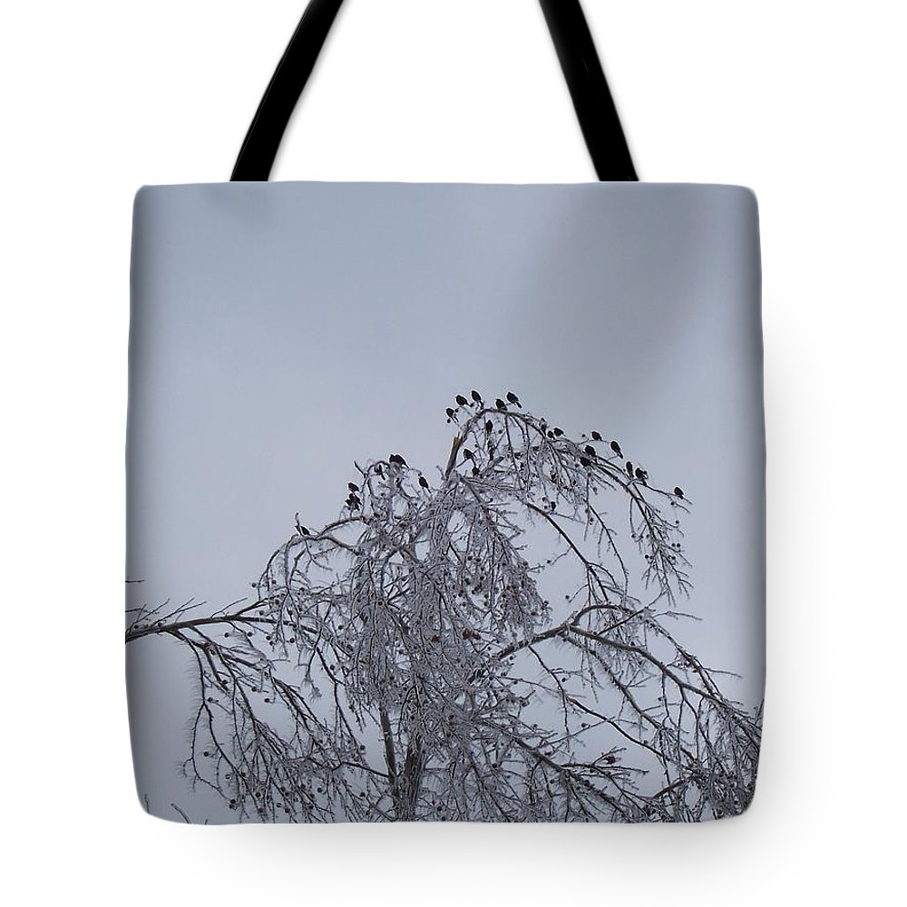 Ice Tote Bag featuring the photograph Cold Landing by Maria Manna
