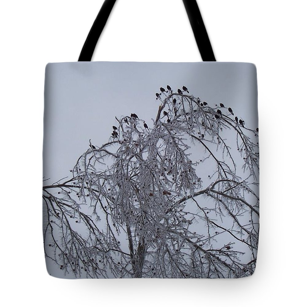 Nature Tote Bag featuring the photograph Cold Landing Pt 2 by Maria Manna