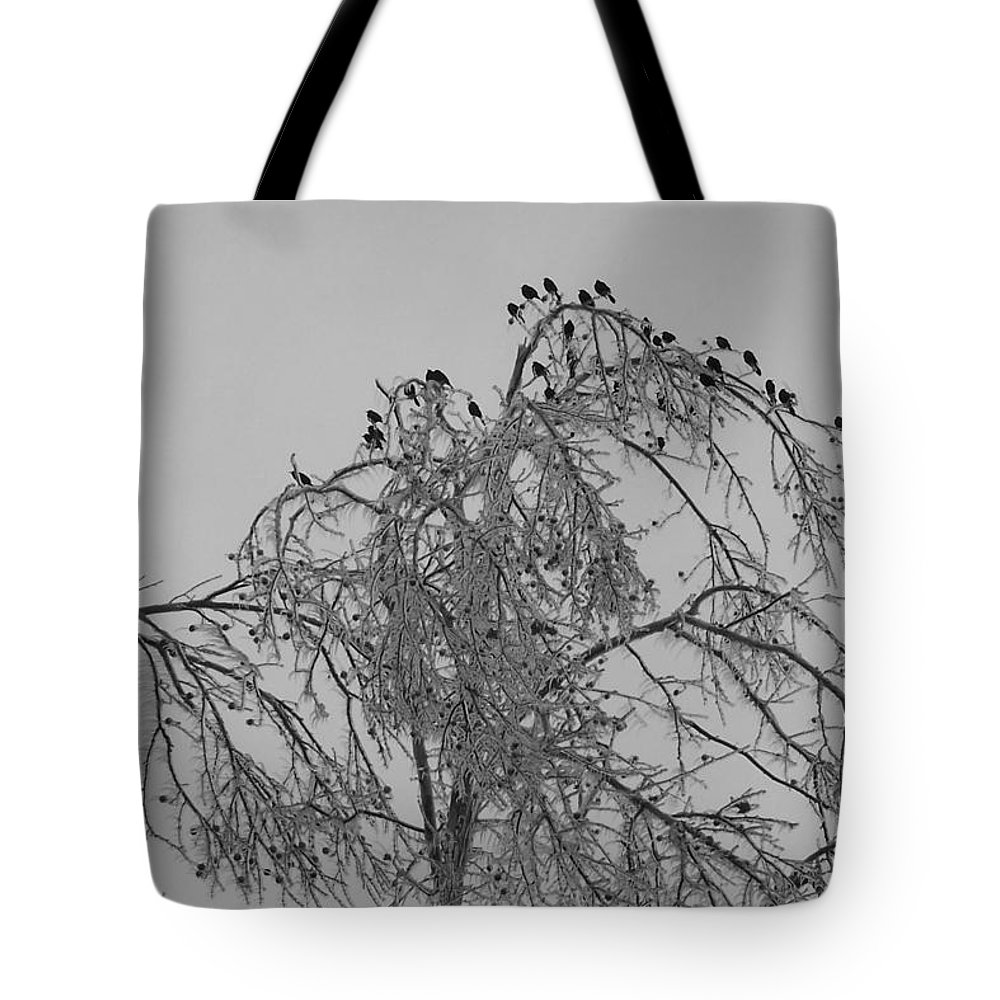 Winter Tote Bag featuring the photograph Cold Landing Pt3 by Maria Manna