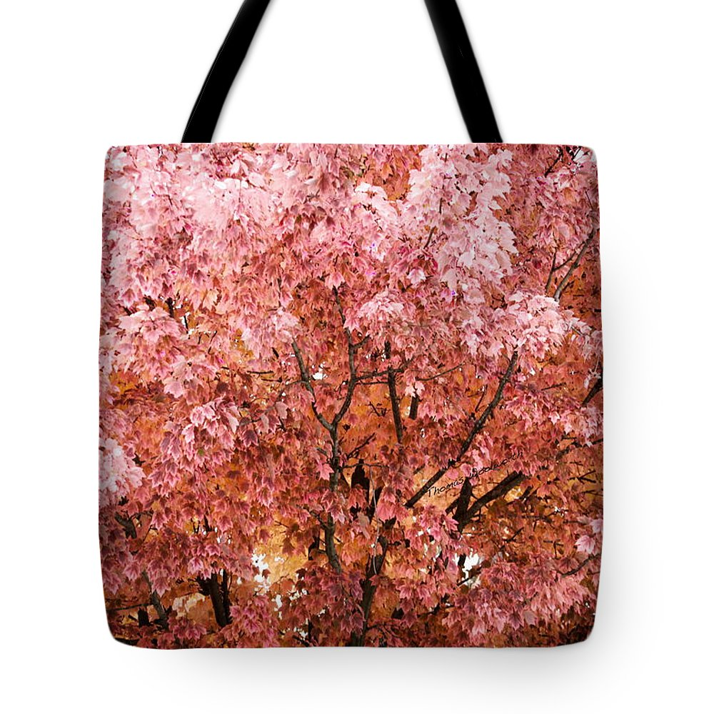 Autumn Tote Bag featuring the photograph Color In The Tree 03 by Thomas Woolworth