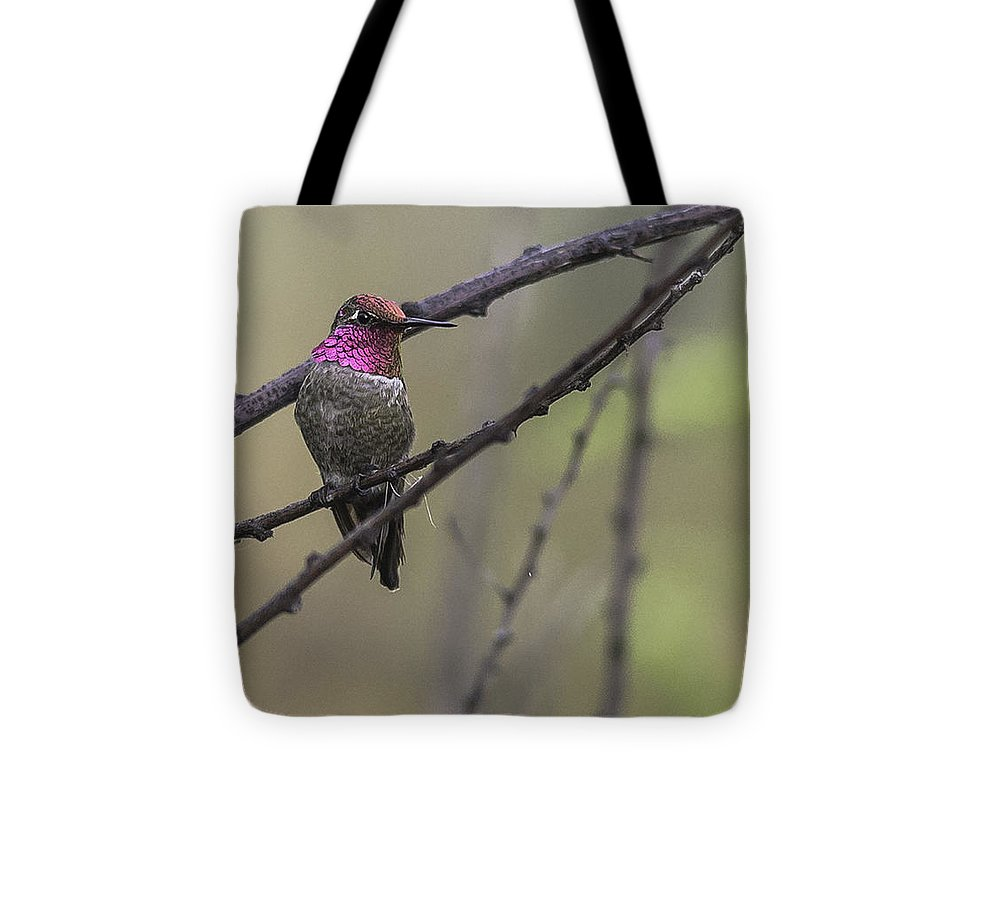 Gwp Tote Bag featuring the photograph Color On A Branch by Lorraine Harrington
