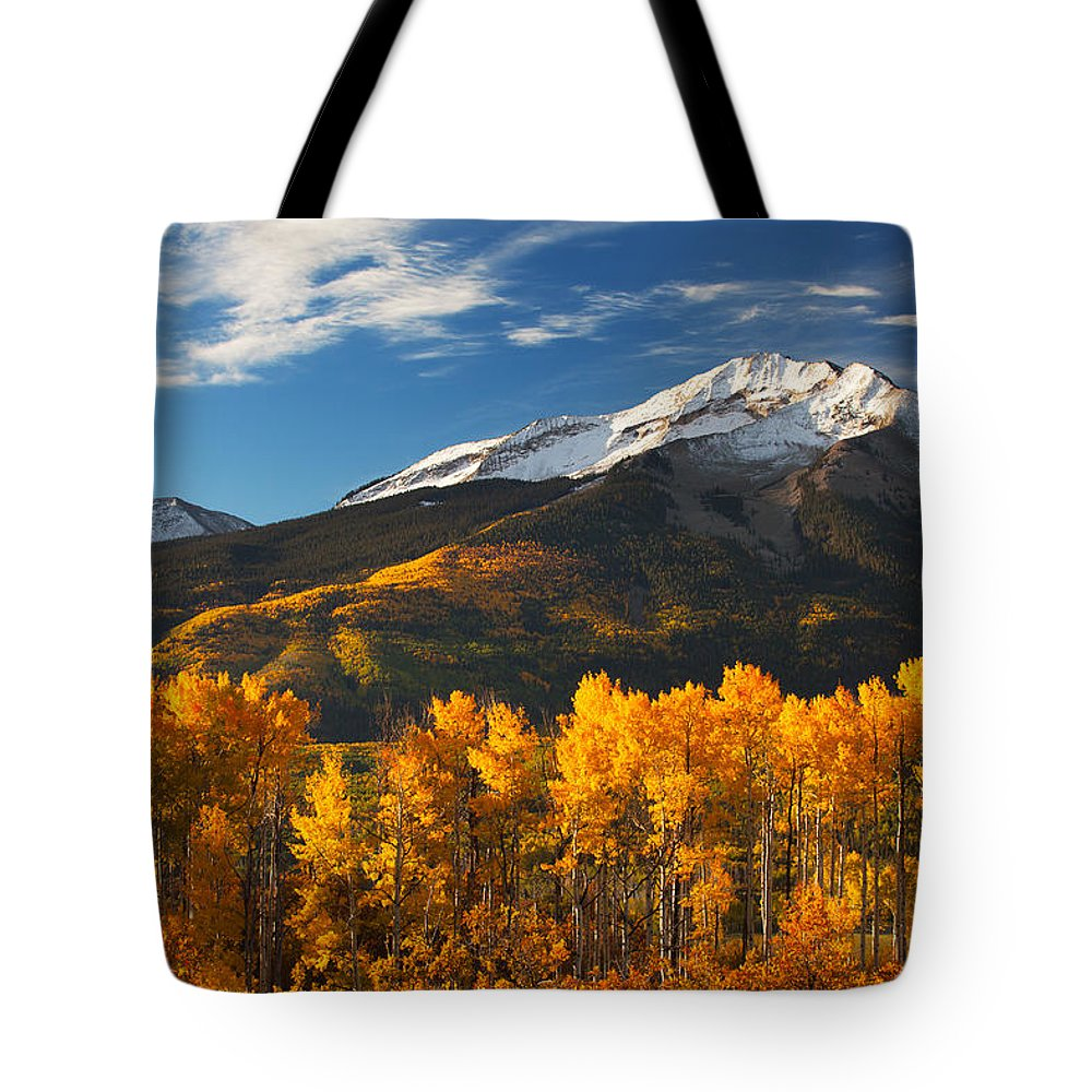 Aspen Tote Bag featuring the photograph Colorado Gold by Darren White