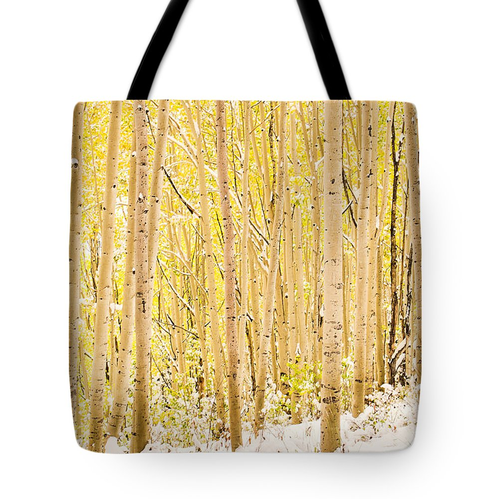 Aspen Tote Bag featuring the photograph Colored Pencils by Emily Dickey