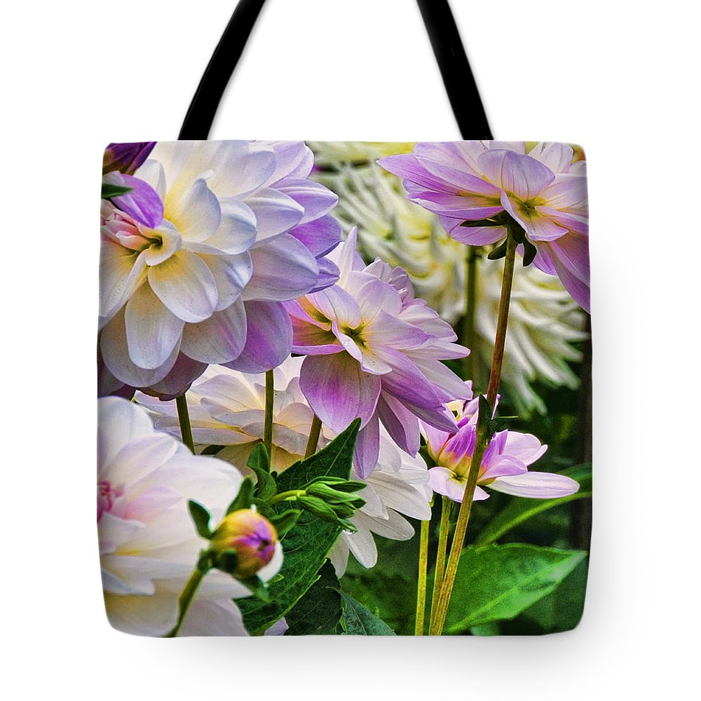Flowers Tote Bag featuring the photograph Colorful Dahlia Garden by Lorrie Morrison