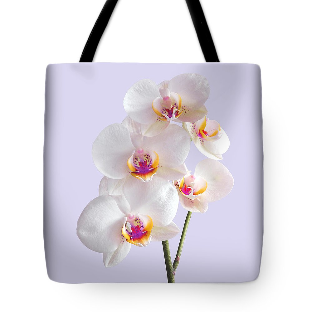 Orchid Tote Bag featuring the photograph Colorful White Orchid On Mauve by Gill Billington