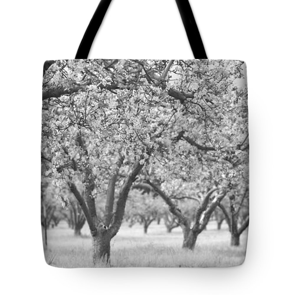 Orchard Tote Bag featuring the photograph Colorless Cherry Blossoms by Scott Campbell