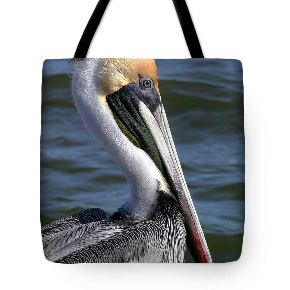 Brown Pelican Tote Bag featuring the photograph Colors Of Adult by Robert Brown