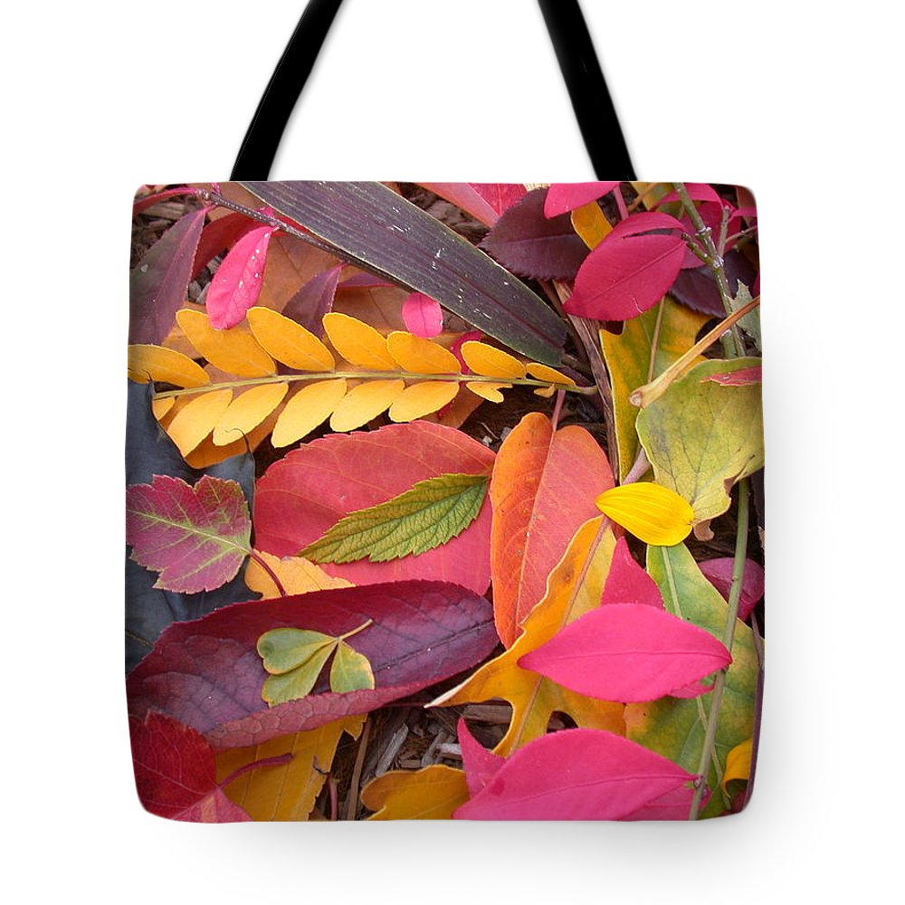 Autumn Tote Bag featuring the photograph Colors Of Autumn by Shane Bechler