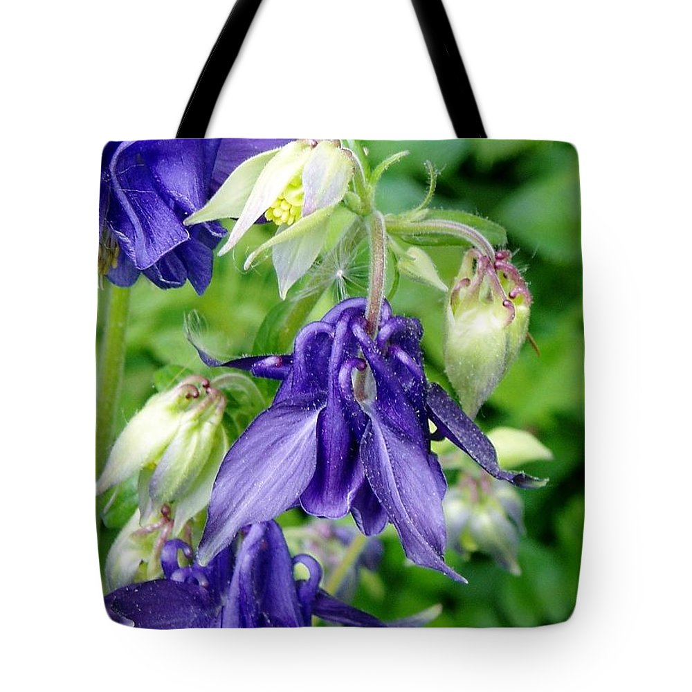 Tote Bag featuring the photograph Columbine Illuminiated Lantern by Renee Croushore