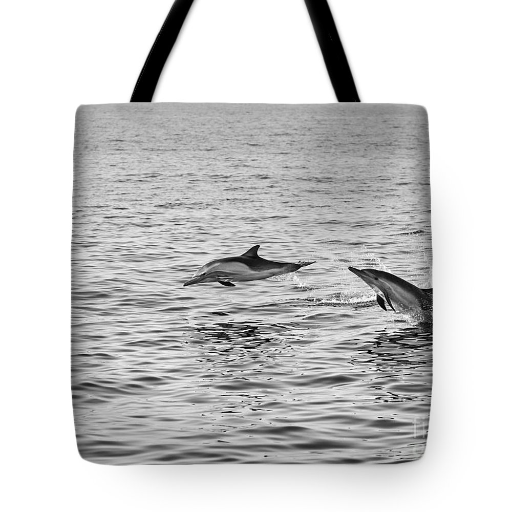 Common Dolphin Tote Bag featuring the photograph Common Dolphins Leaping. by Jamie Pham