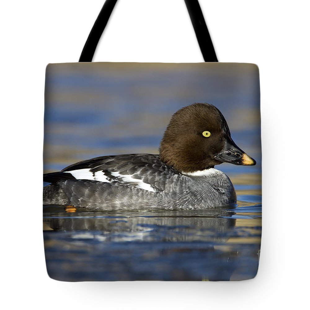 Duck Tote Bag featuring the photograph Common Goldeneye Hen by Bryan Keil