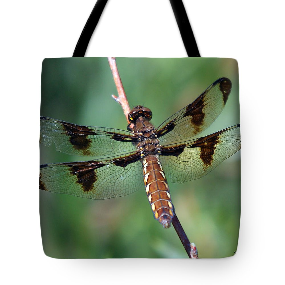Nature Tote Bag featuring the photograph Common White-tail Dragonfly by David Salter