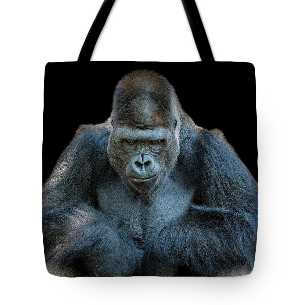 Animal Themes Tote Bag featuring the photograph Contemplative Gorilla by Dean Fikar