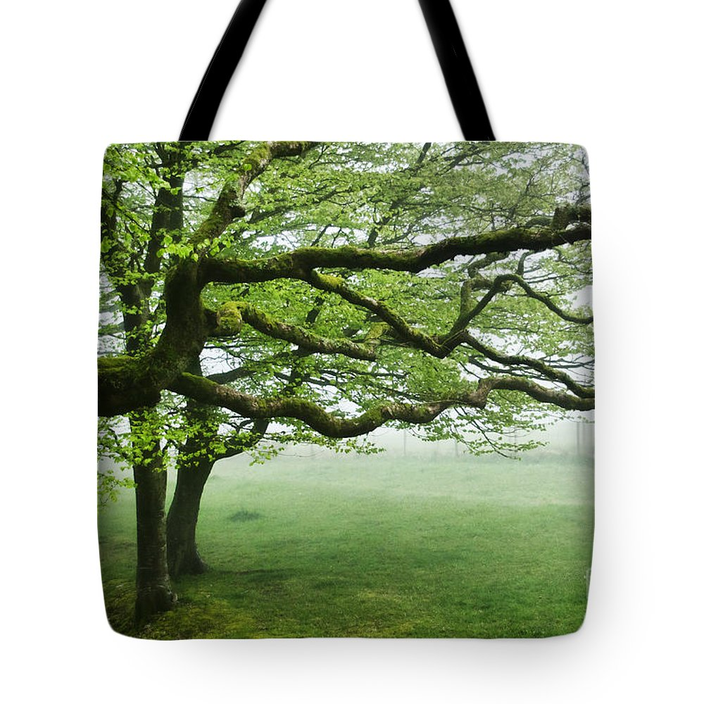Blackbury Camp Tote Bag featuring the photograph Cool Misty Day At Blackbury Camp by Susie Peek