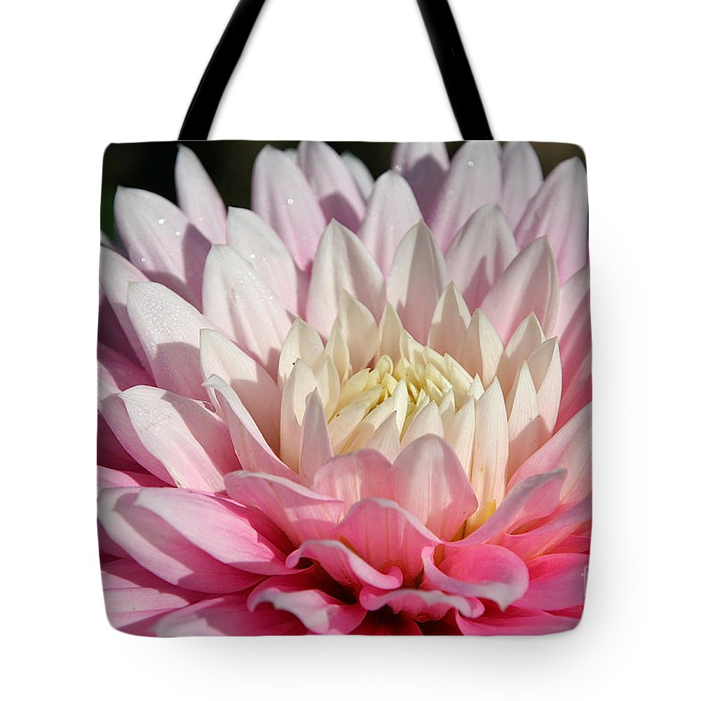 Flower Tote Bag featuring the photograph Coral Dahlia by Susan Herber