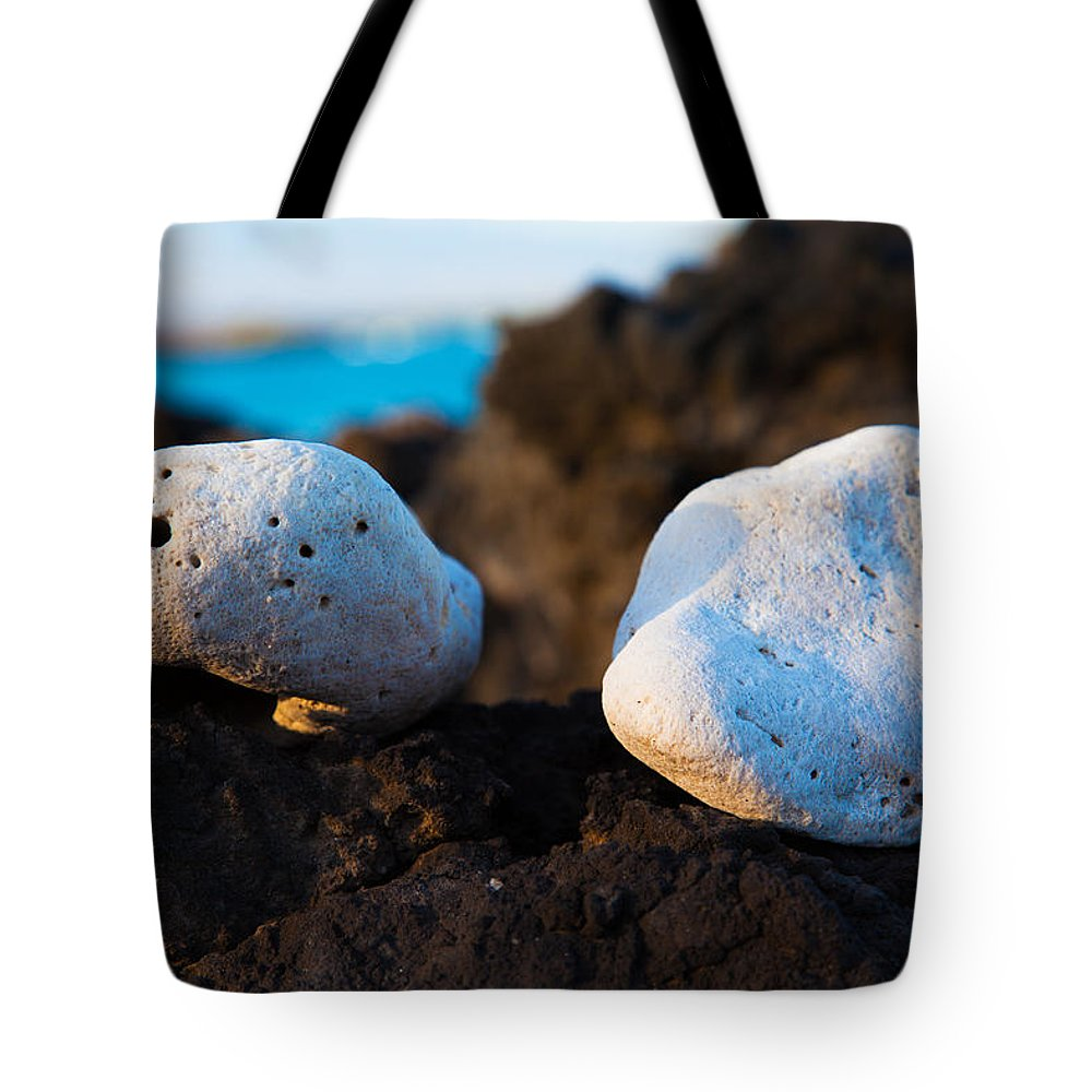 Abstract Tote Bag featuring the photograph Coral Friends by Omaste Witkowski