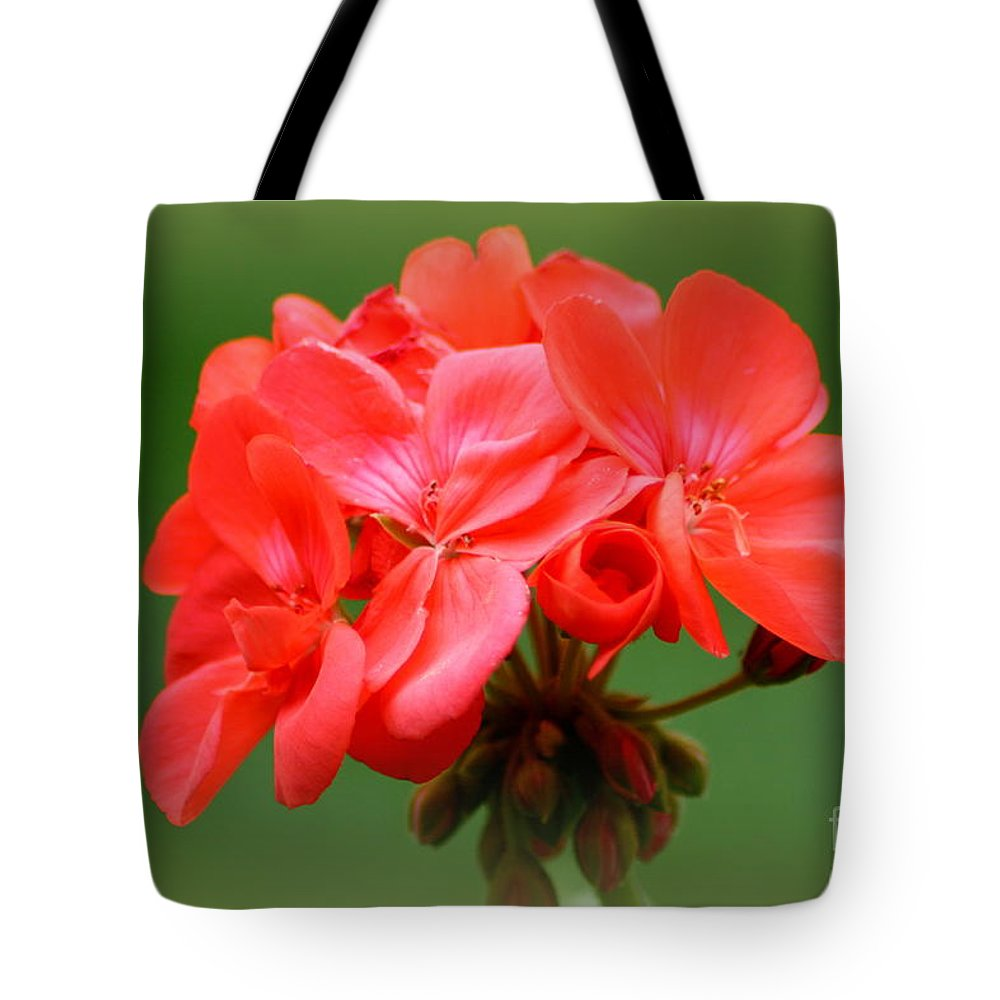 Coral Geraniums Tote Bag featuring the photograph Coral Geraniums by Patti Whitten