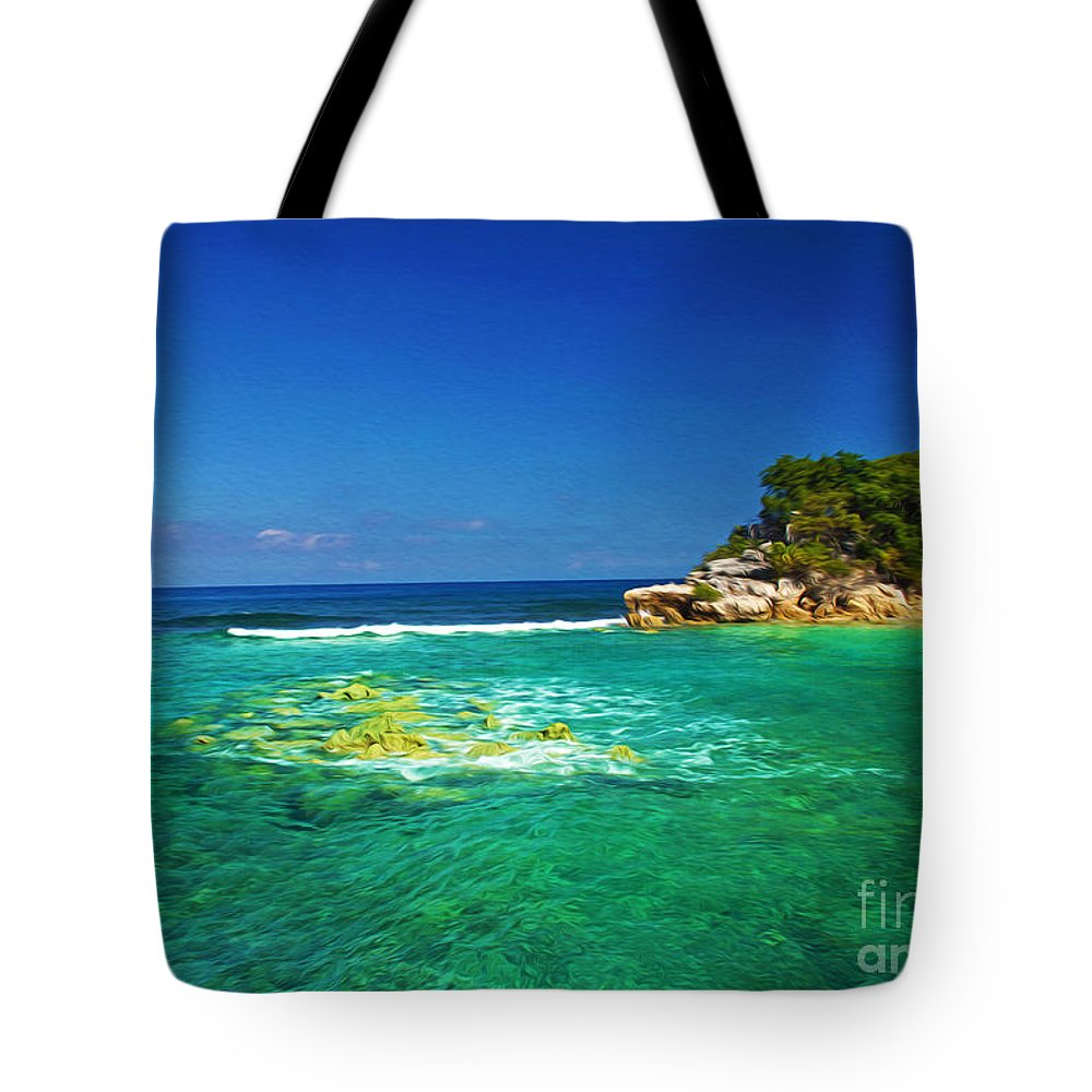 Haiti Tote Bag featuring the photograph Coral Seas Haiti by Laura D Young