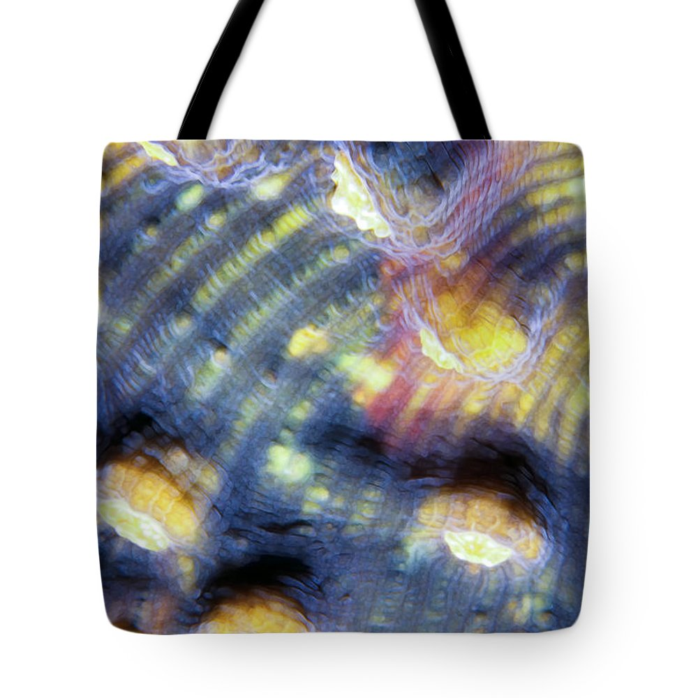 Micronesia Tote Bag featuring the photograph Corals 3 by Dawn Eshelman