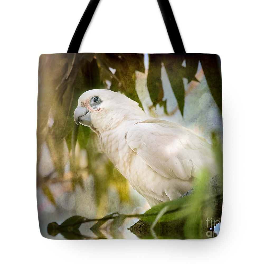 Corella Tote Bag featuring the photograph Corella In Morning Light by Kym Clarke