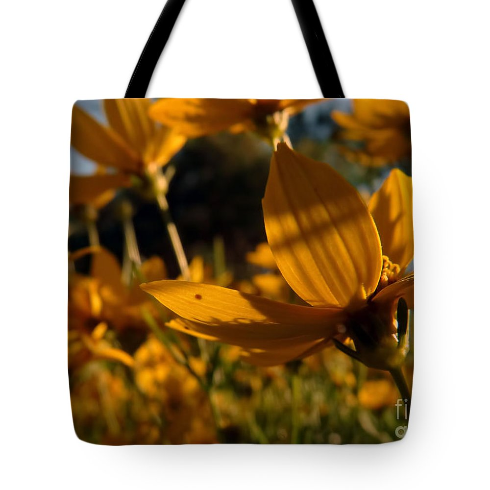 Digital Tote Bag featuring the digital art Coreopsis Summer 2010 by Kathryn Strick