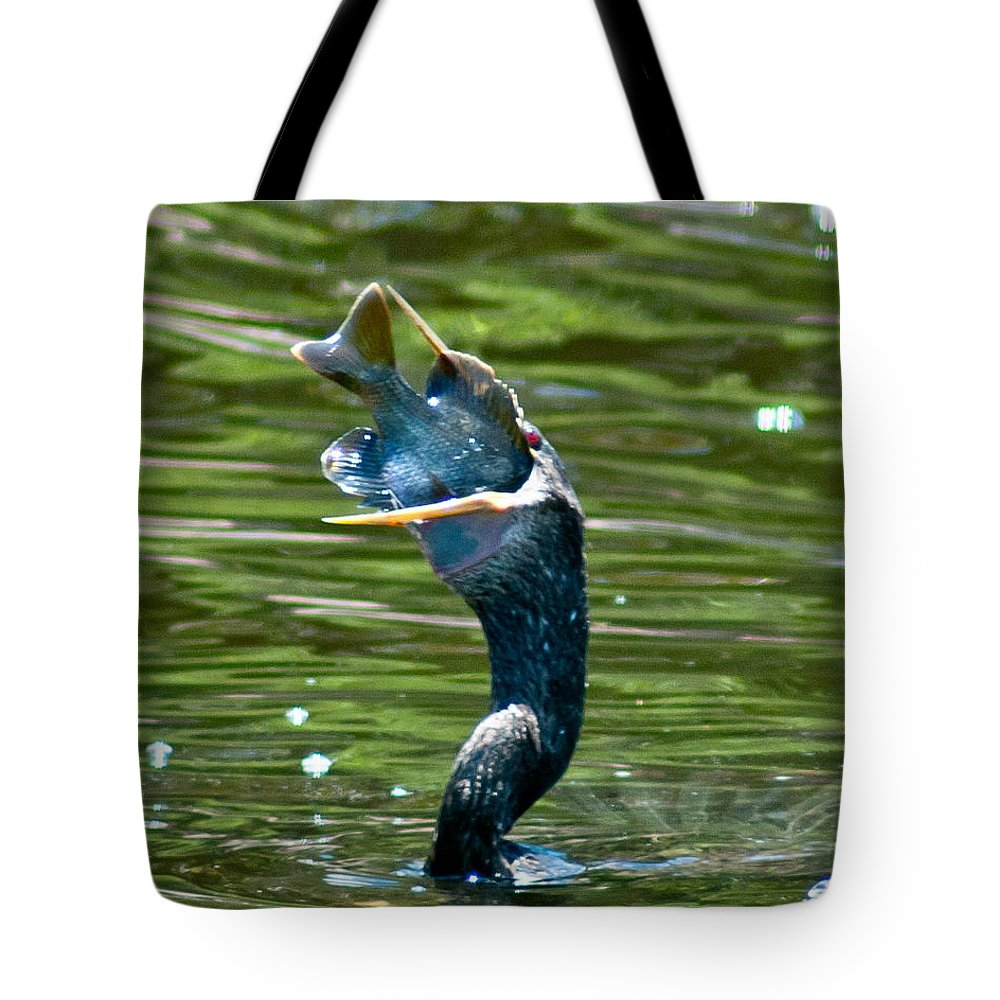 Cormorant Tote Bag featuring the photograph Cormorant With Catch by Stephen Whalen