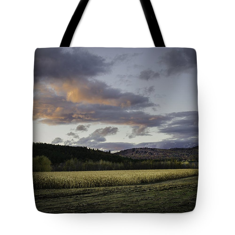 Sunset Tote Bag featuring the photograph Cornfield Sunset by Lisa Bryant