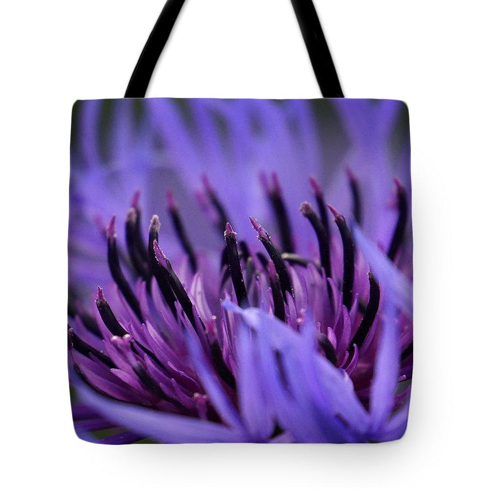 Cornflower Tote Bag featuring the photograph Cornflower by Inge Riis McDonald