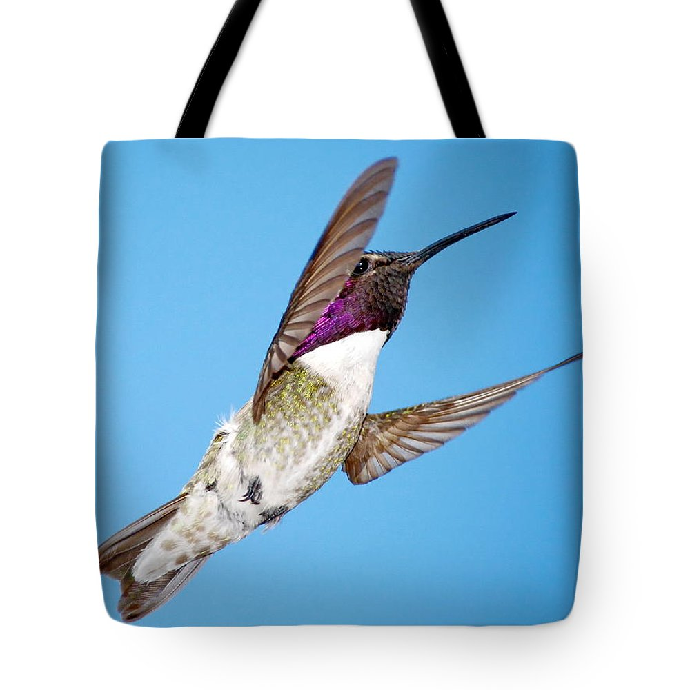 Animal Tote Bag featuring the photograph Costa's Hummingbird In Flight by Ron D Johnson