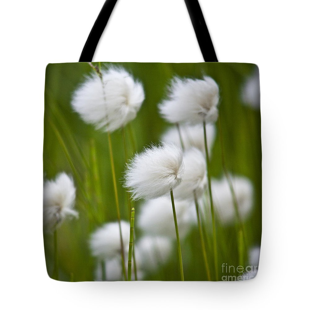 Heiko Tote Bag featuring the photograph Cottonsedge by Heiko Koehrer-Wagner